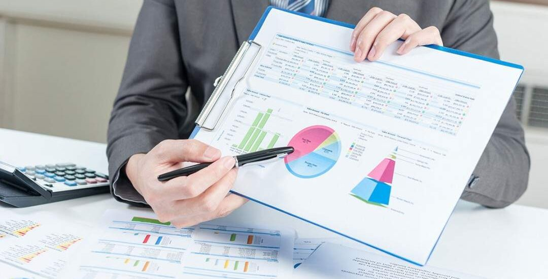 SME Consulting castle financial projections